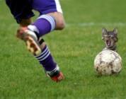 Football (Soccer) Thread.